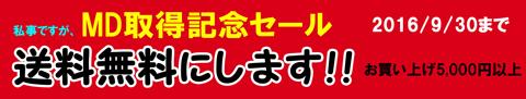 md_get_sale_b.jpg